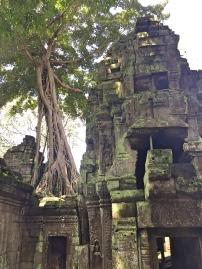 BBM TRAVELS | Siem Reap, Cambodia | Ta Phrom