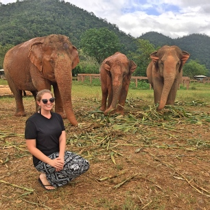 BBM TRAVELS | Chiang Mai, Thailand | Elephant Nature Park